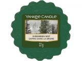 Yankee Candle Les